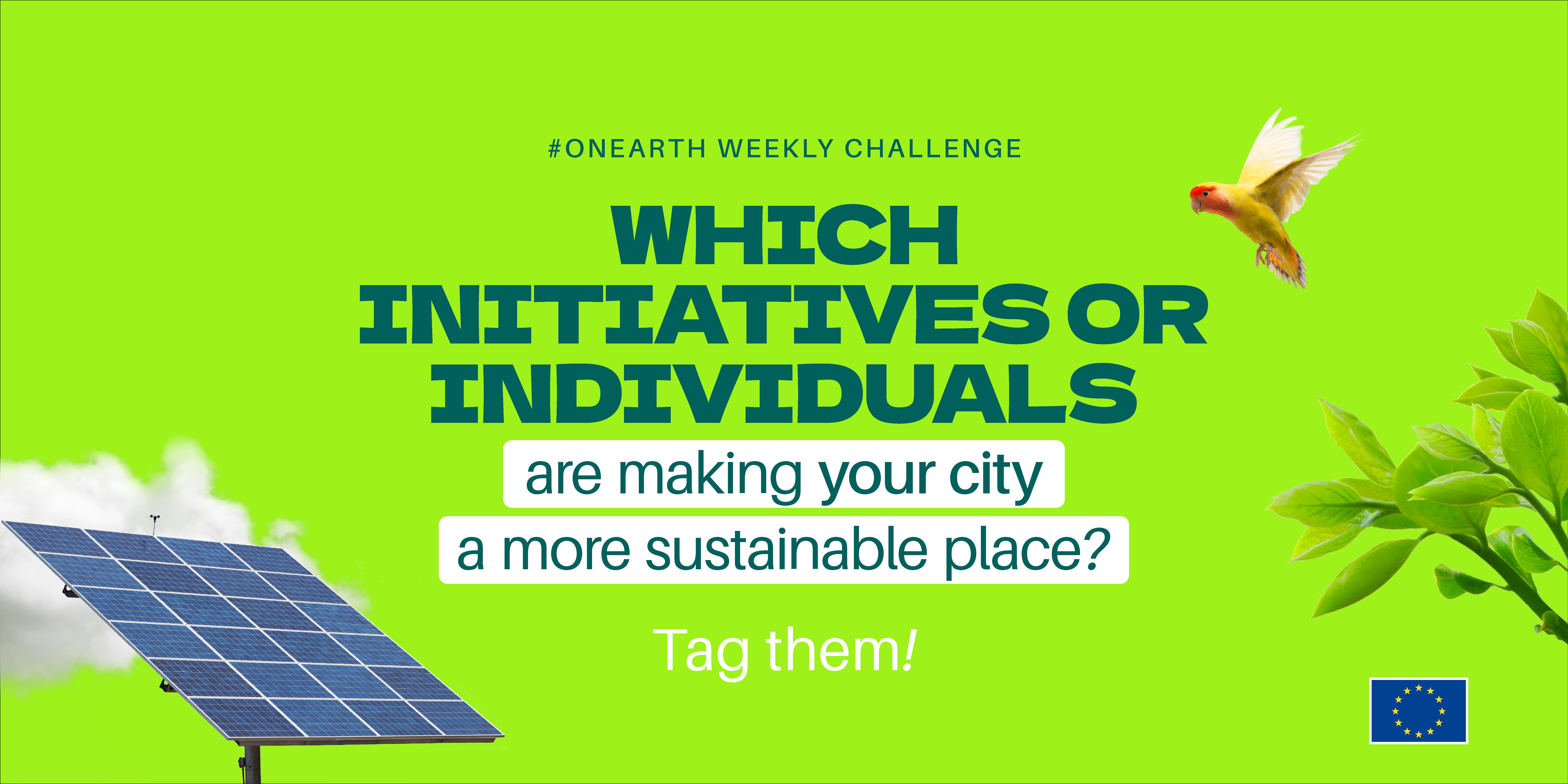 #OnEath Challenge - Week 2