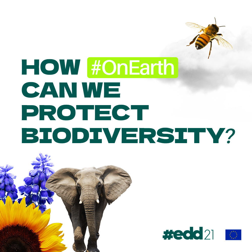 #OnEarth Campaign Week 3