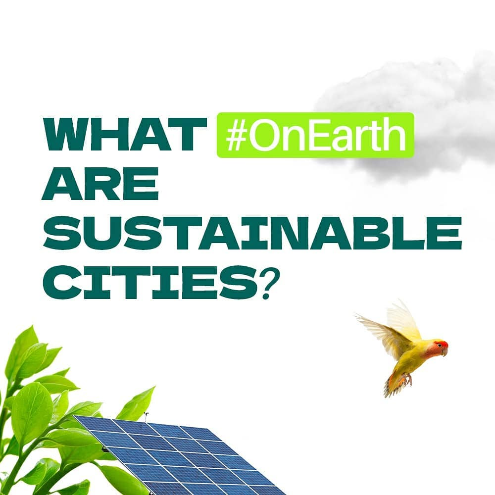 Whar OnEarth are sustainable cities?